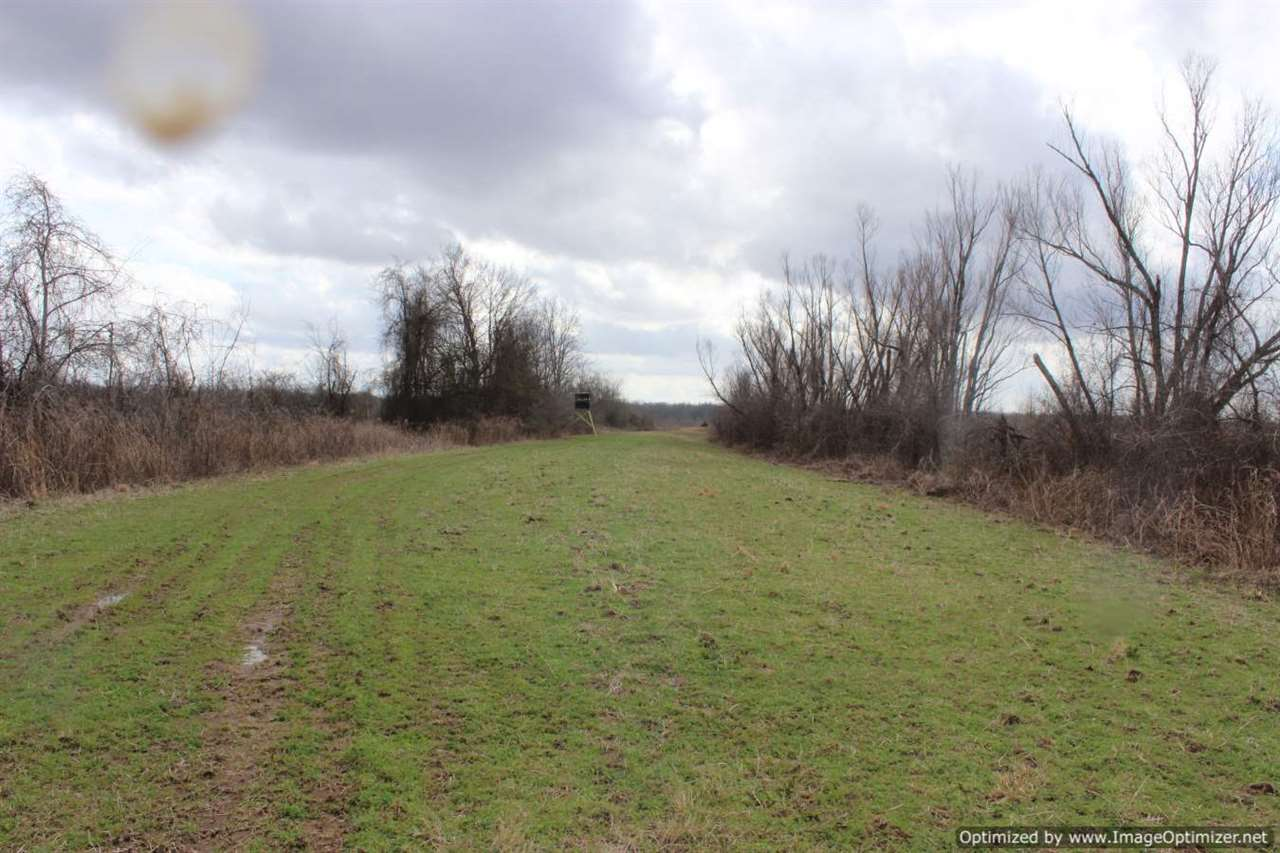 2 mississippi hunting land for sale food plots 4 corner properties - Houses for small plots of land ...