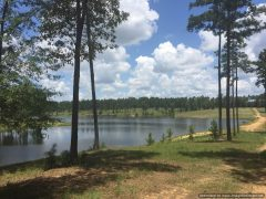 Lincoln County MS Land For Sale