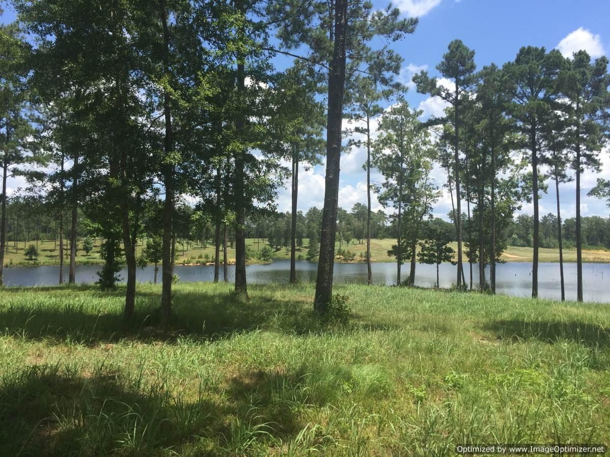 4 lincoln county ms lakefront property for sale 4 corner for Lake front properties