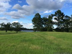 1. Madison County MS Land For Sale