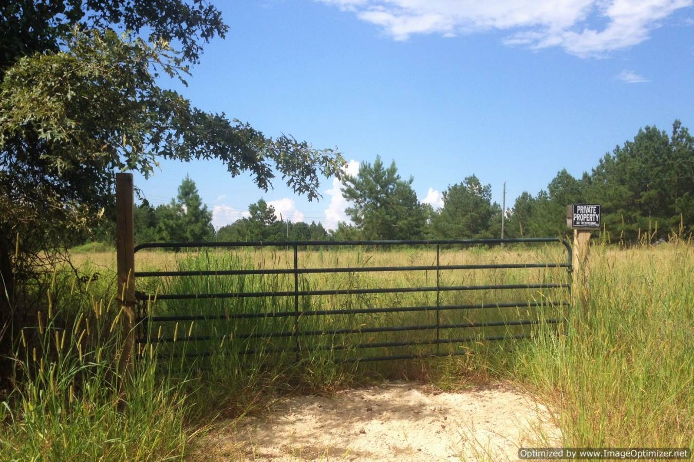 Mississippi rankin county sandhill - 20 5 Acres In Rankin County Ms