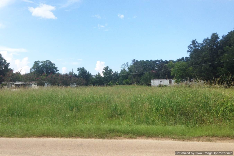 Mississippi rankin county sandhill - Mississippi Rankin County Sandhill 39