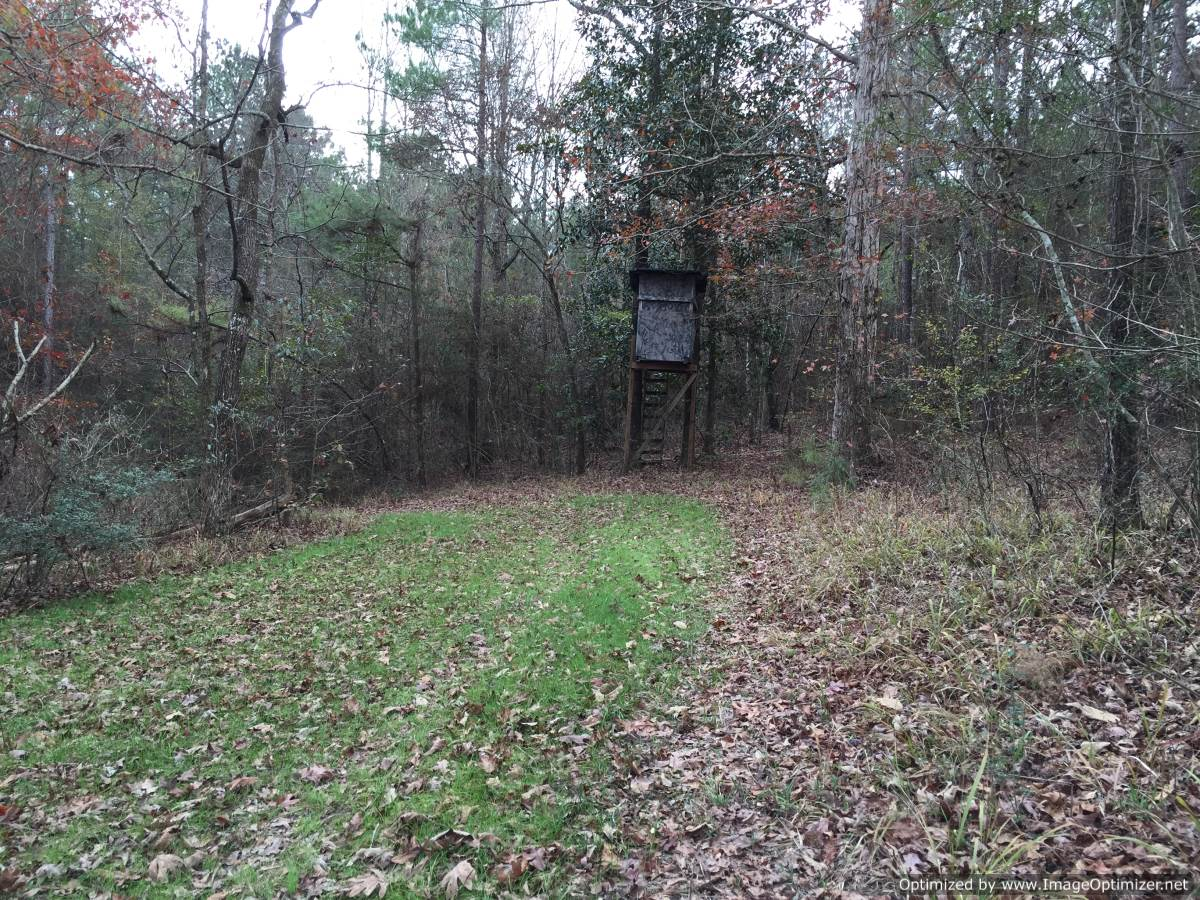 21 Copiah County Ms Land For Sale 4 Corner Properties