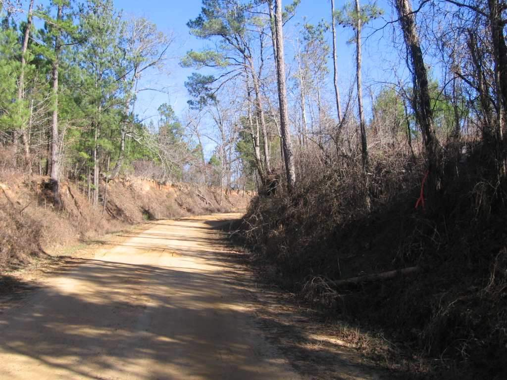 Mississippi madison county camden - 160 Acres Camden Madison County Ms