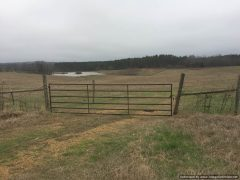 holmes-county-ms-land-for-sale