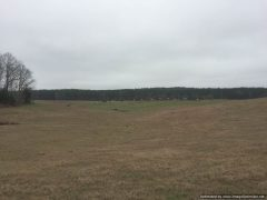 holmes-county-ms-pastureland-for-sale