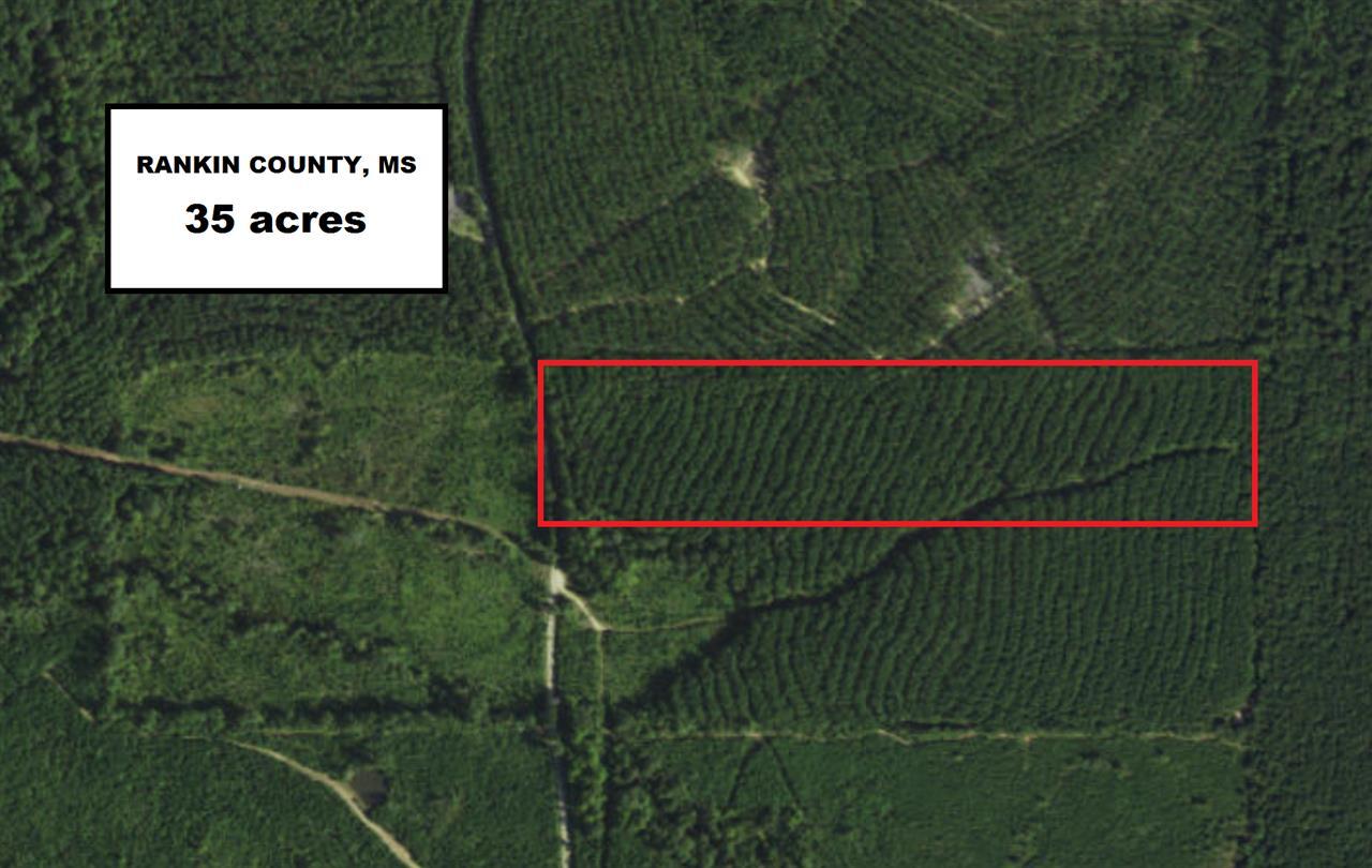 Mississippi rankin county sandhill - Aerial