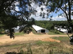 copiah-county-ms-farm-land-for-sale