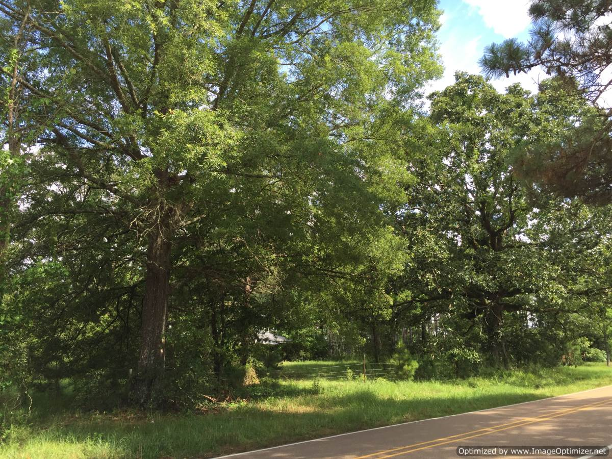 copiah county Copiah county genealogical community for mississippi, family research,township history, cemetery listings, marriages, births, deaths, obits, bios, surnames.